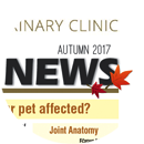ESVC newsletter Autumn